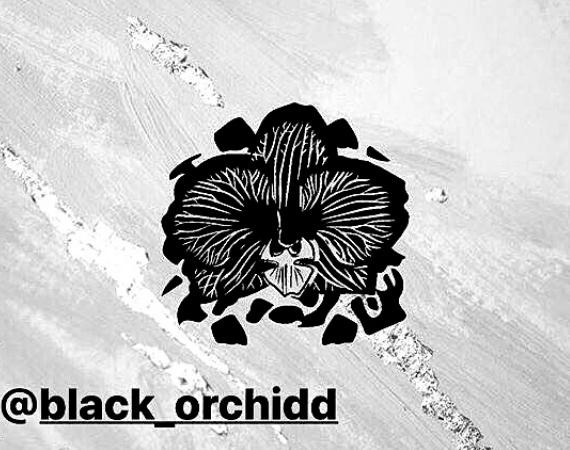 Black Orchildd